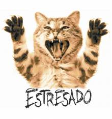 TRANSFER CAMISETA ESTRESADO