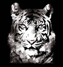 TRANSFER TSHIRT WHITE TIGER