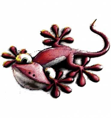 http://shop.jmb.es/2621-thickbox_default/transfer-camiseta-salamandra-roja.jpg