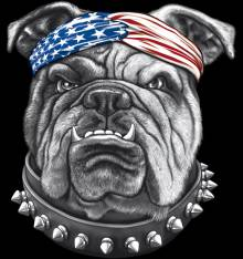 TRANSFER CAMISETA BULLDOG USA
