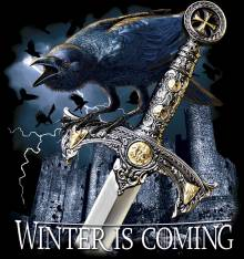 TRANSFER CAMISETA WINTER IS COMING