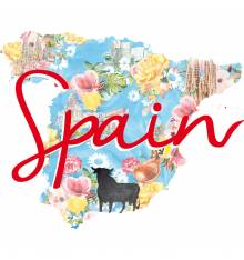 TRANSFER CAMISETA MAPA FLORES SPAIN