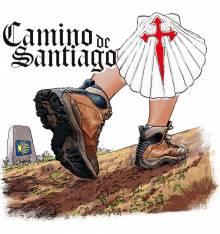 TRANSFER CAMISETA CONCHA CAMINO